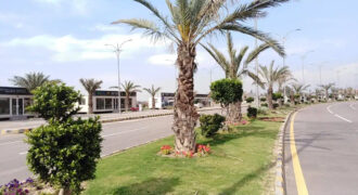 Al Noor Orchard 1 Kanal Plot For Sale on Easy Installment Plan