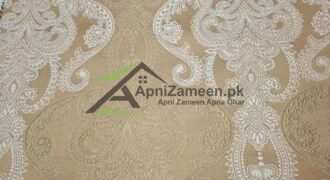 2 Marla Double Story House For Rent in Marghzar Officers Colony Lahore Punjab Pakistan